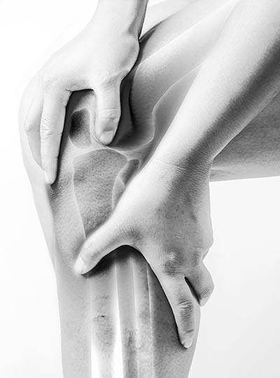 staw kolanowy budowa kolana